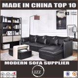 Spätestes europäisches modernes Art-Möbel-Leder-Sofa