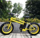 bicicleta eléctrica del motor 250W suministrada por la fabricación