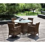 小さい円卓会議が付いている庭の表そして椅子