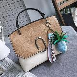 Luxry modificó bolsos de hombro para requisitos particulares del Color-Collsion de la manera del bolso con los accesorios para las mujeres Sy8522