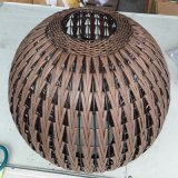 中国様式の青銅の藤のランタンの魚の照明床ランプ