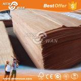 خشب رخيصة طبيعيّة [أكووم] [كيورينغ] خشب صلد قشرة