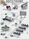 Schlamm-Pumpe für Platin-Erz-Reduktion-Mineralverarbeitungsanlage-Flussdiagramm
