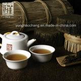 中国フーナンBaishaxi Bailiangの暗い茶茶を細くする有機性茶健康の茶