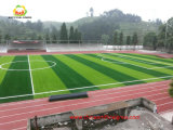 Verde claro y verde oscuro monofilamento de fibra de césped artificial para el fútbol del fútbol