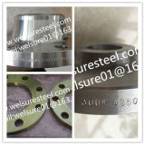 Wn RF 200nb Sch40   150# flange do Saf 2507