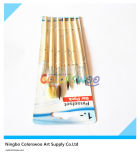 6PCS Wooden Handle Animal Fiber Hair Artist Brush voor Painting en Drawing (houten kleur)