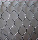 電流を通された六角形のGabionの石造りの金網との(セリウムおよびSGS)