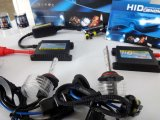 AC 55W 9006 HID Light Kits met 2 Ballast en 2 Xenon Lamp