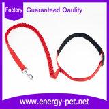 製造所の高品質ペット金属のホックは自由なナイロン犬の鎖を渡す