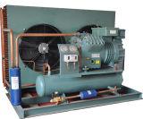 Unidad de condensación refrigerada por aire de refrigeración paralela de la cámara fría