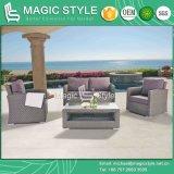 Sofá do Rattan com do sofá novo da combinação do projeto do coxim o sofá ajustado do jardim com o sofá do pátio 2-Seat do descanso (ESTILO MÁGICO)