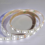 Luz de tira flexible impermeable del pegamento SMD5050 el 14.4W/M LED de la PU IP65