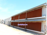 Machines de ferme avicole avec la qualité et le prix bas pour un service d'arrêt
