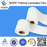 Pellicola termica della laminazione preincollata BOPP (opaca)