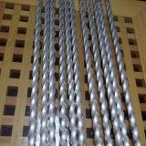 Tubo Twisted dell'acciaio inossidabile 201 per la decorazione