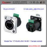 Fabrik RJ45 Electric Socket/8p8c Modular Plug RJ45 Connector für Automatic Control und Lighting