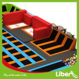 De Arena van de trampoline, het BinnenPretpark van de Trampoline
