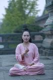 """La canapa di bambù della coda di rondine di prima scelta delle donne di """"chi"""" di Wudang Tai mette in mostra i vestiti accoglienti"""