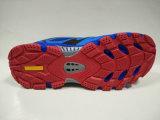 Ботинки профессионального спорта конструкции способа холодные Trekking