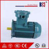 Motore a corrente alternata Elettrico antiesplosione con il prezzo di fabbrica (serie YB2/YB3)