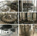 Automatische 3 in-1 het Vullen van het Mineraalwater Machine