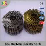 Chiodo della bobina di alta qualità/chiodo bobina del pallet/chiodi della bobina per i pallet con il prezzo basso