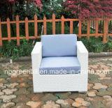 PEの藤のソファーの一定の屋外の藤の家具(9059S)