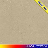 建物のMatarialの無作法で荒い浮上した磁器のタイル張りの床のタイル(WR-IMD2650)