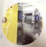 세륨 (DHD-30L)를 가진 밀어남 Blow Molding Machines