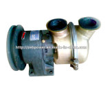 Cummins Engine zerteilt Wasser-Pumpe (3051408)