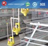 Equipo de acero de la jaula del pollo de la granja avícola de la novia Q235 (A-3L120)