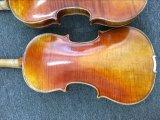 Violino avanzato degli insiemi completi dello strumento musicale di alta qualità