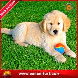Stuoia artificiale dell'erba di migliori prezzi per i cani