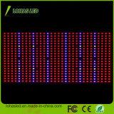 Hydroponic SMD LED 플랜트 빛 600W 가득 차있는 스펙트럼은 빛을 증가한다