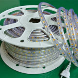 SMD5050 Bule 또는 녹색 빨강 LED 밧줄 빛