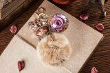 Ivenran preservó la flor fresca Monchhichi Keychain para el presente del día de tarjeta del día de San Valentín