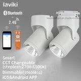 Spur-Licht HF-2.4G drahtloses Fernsteuerungs-LED Dimmable mit 15W
