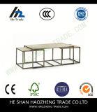 Il tavolino da salotto dell'arco Hzct080 Metals la mobilia