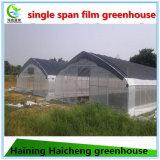 녹색 집을 차광하는 최신 직류 전기를 통한 강철 프레임