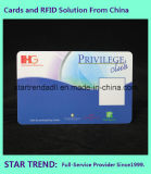 De Volledige Kleur van het Identiteitskaart van de veiligheid voor Bedrijf