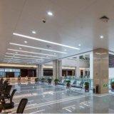 Het hete Naar maat gemaakte Plafond van het Aluminium van de Verkoop Modieuze voor Binnenlandse Decoratief