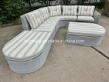 5 parti della mobilia esterna del Lounger del rattan stabilito di vimini del sofà