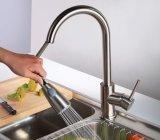 Retirer le taraud de mélangeur balayé par jet de robinet de cuisine de nickel