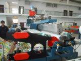 Máquina plástica da extrusora do revestimento da Cor-Película da maquinaria EPE com boa qualidade Jc-EPE-Lm2200