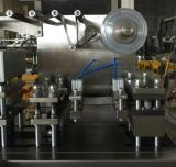 GMP Standard Automatic Tablet Capsule Blister Packing Machine