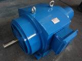 Motor de Indução de Rotor de Motor / Ferida de Indução Trifásica