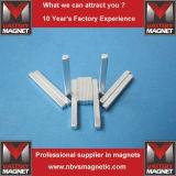Quadrat und rechteckige Block-Neodym-seltene Massen-Magneten