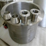 Entrerrosca del entrerrosca del macho de estampar del reductor del acero de los Ss 304/Titanium