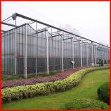 Serre van het Blad van het Polycarbonaat van de Spanwijdte van Venlo van de Landbouw van China de Multi voor Tuin